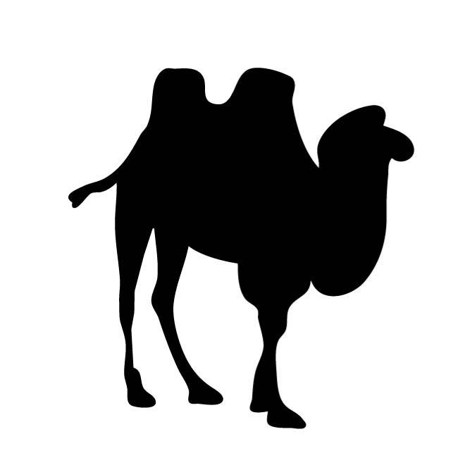 660x660 Silhouette Of A Camel
