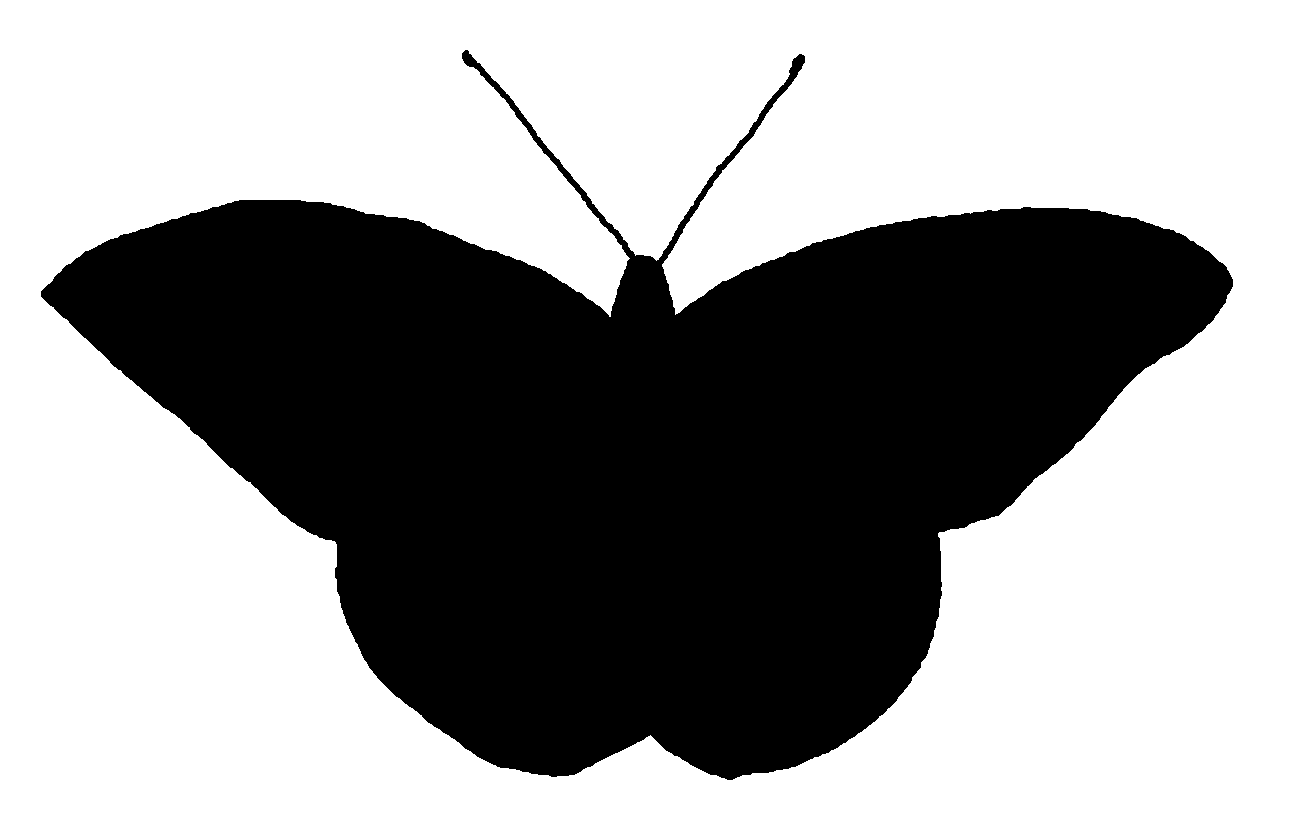 1289x813 Butterfly Silhouette Vector Free
