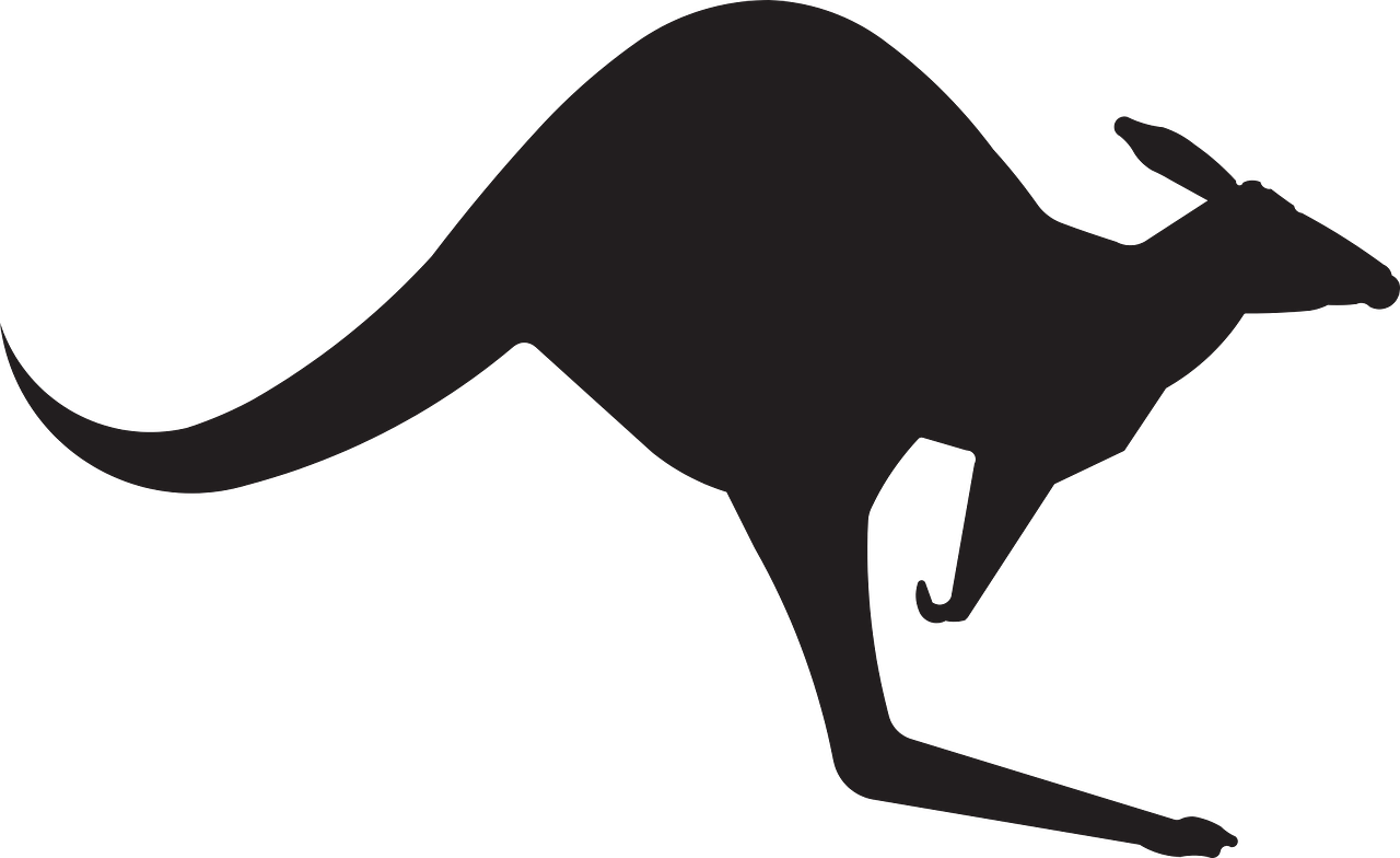 1280x784 Australia, Kangaroo Animal Australia Jump Silhouette