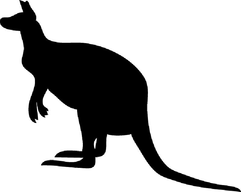 800x637 Black, Australia, Silhouette, Kangaroo, Pouch, Hop