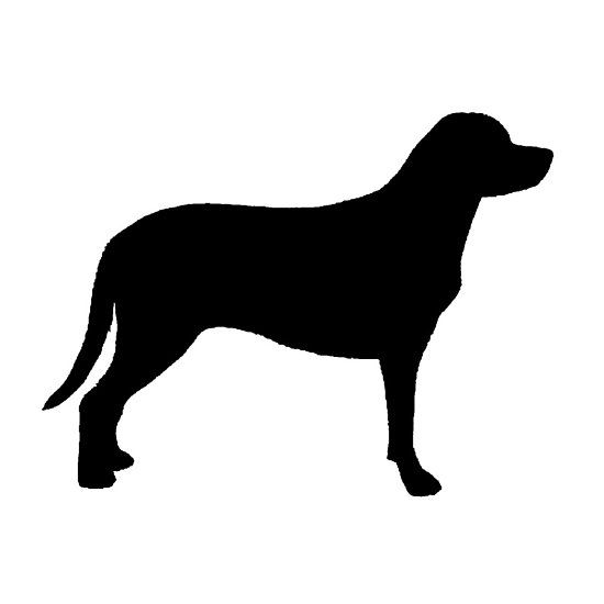 550x550 Greater Swiss Mountain Dog Silhouette Dog Breeds