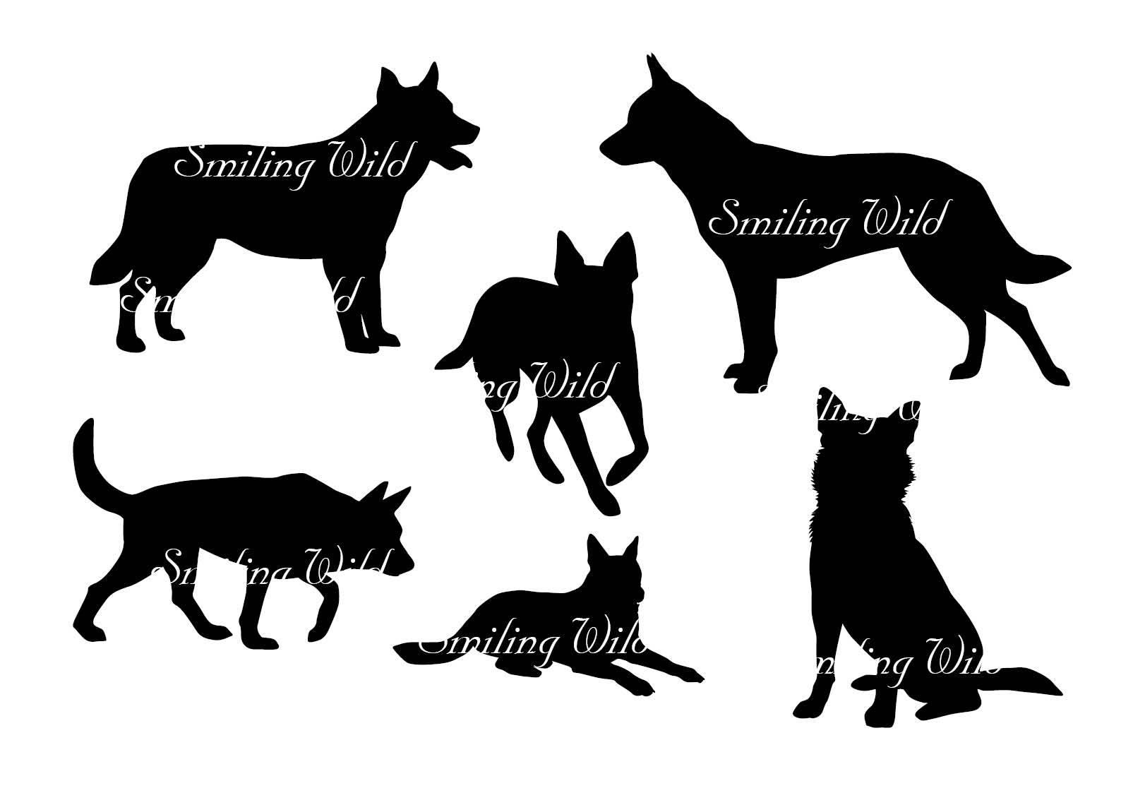 1588x1123 Australian Cattle Dog Svg Silhouette Clipart Cutout Australian