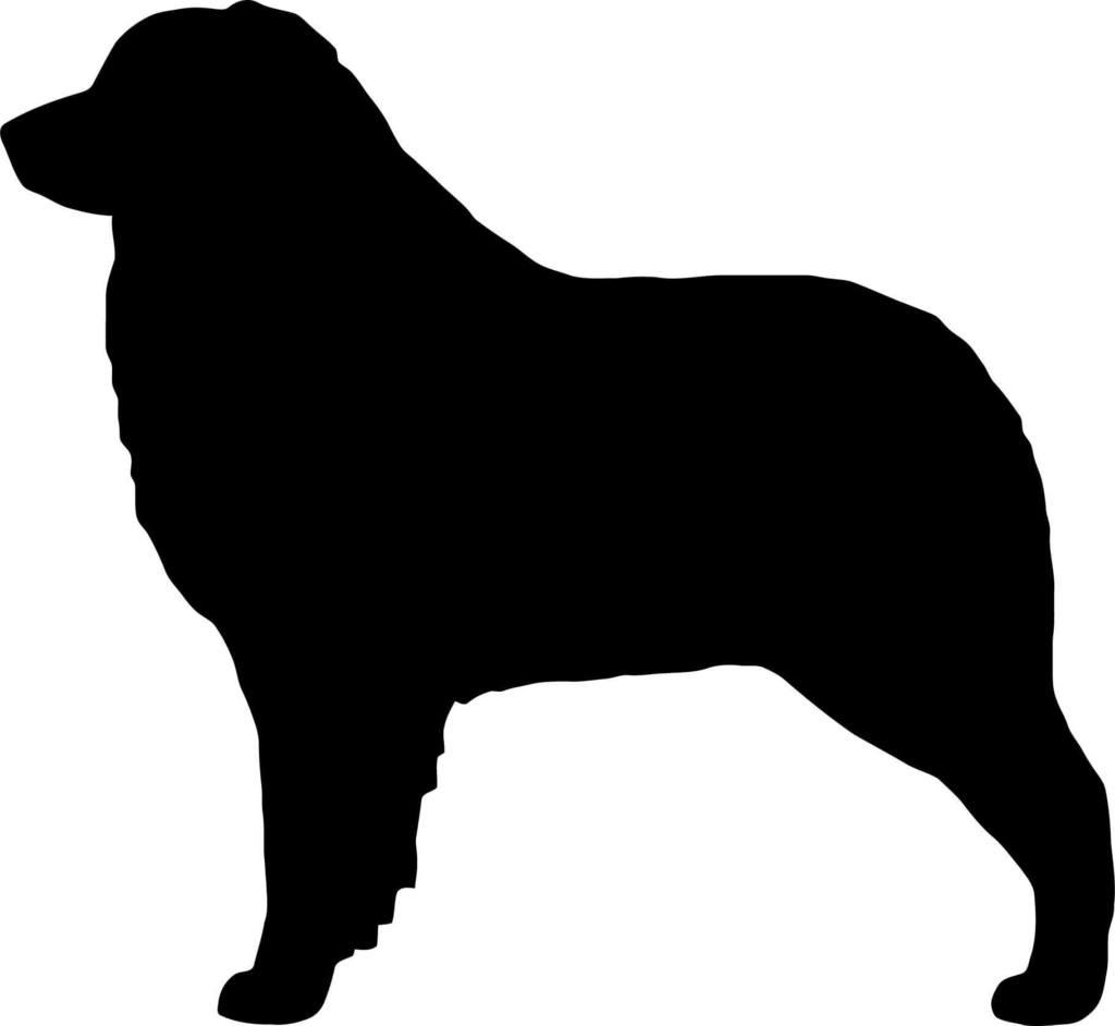 1024x942 Australian Shepherd Dog Silhouette
