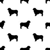 173x173 Australian Shepherd Silhouette