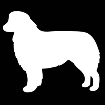 350x350 Buy One Of Our Australian Shepherd Silhouette Embroidery Gifts