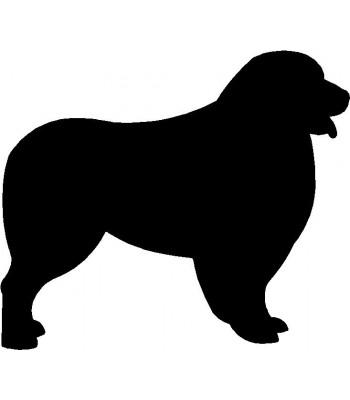 350x400 Dog Welcome Sign Breed Australian Shepherd