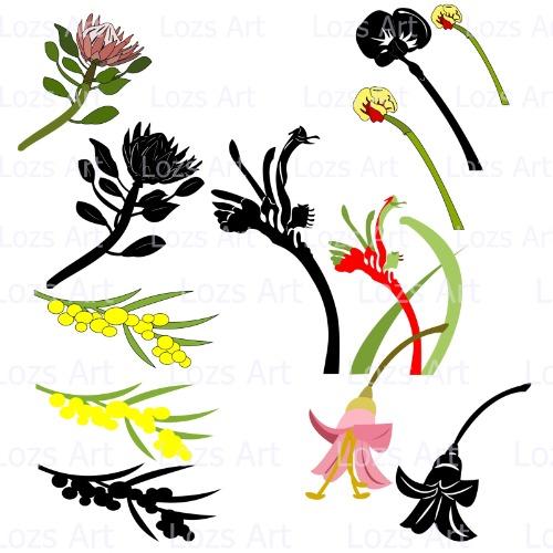 500x500 Australian Wildflower Flower Images Cutting Files Fcm Png Pdf Svg