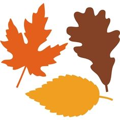 236x236 Fall Leaves