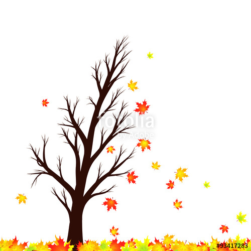 500x500 Lovely Autumn Season Maple Tree Silhouette With Red And Gold