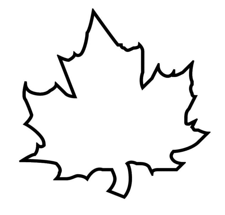 755x720 Printable Leaf Stencil, Outline, And Silhouette