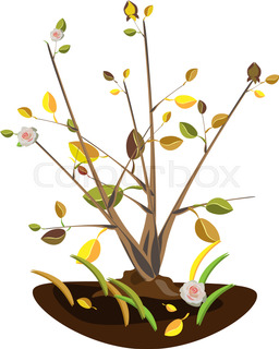 256x320 Autumn Tree With Falling Leaves, Maple Leaves Stock Vector