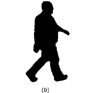 311x311 A) Originally Extracted Silhouette, (B) Rotated Silhouette, (C