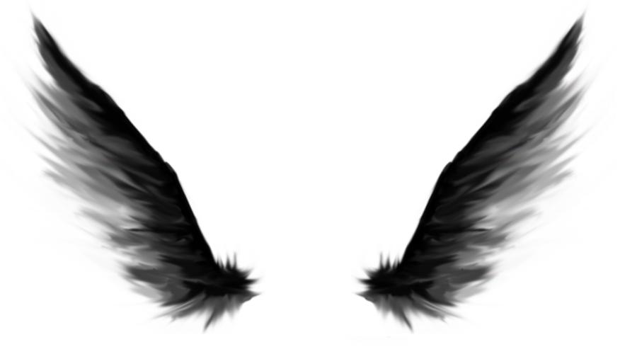 900x500 Black Angel Wings Clipart
