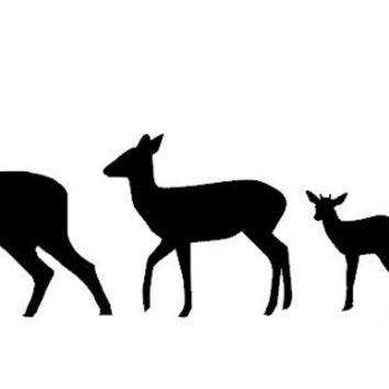 354x354 Deer Silhouette Family Vinyl Car Decal From Countrychicantiques