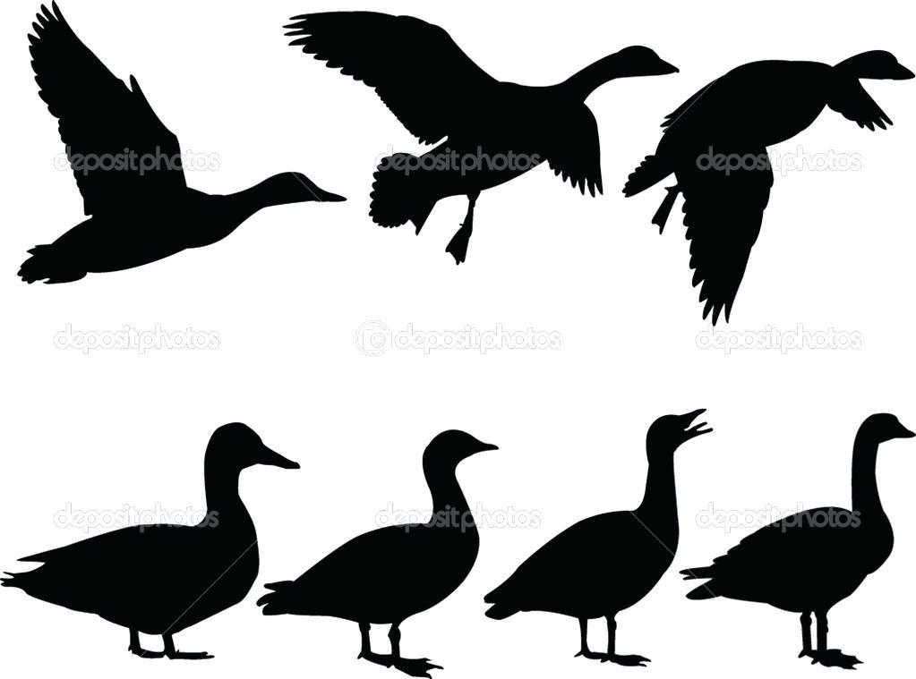 1023x759 Duck Template Animal Templates Free Premium Templates Baby Duck