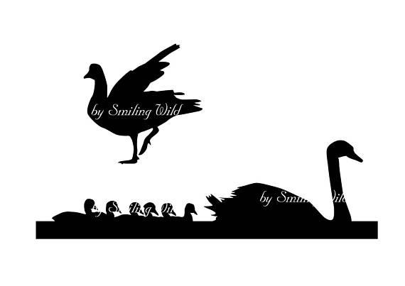 570x403 N America Birds Svg Waterfowl Silhouette Swan Cygnet Svg Cutout