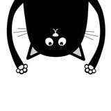 160x160 Black Funny Cat Head Silhouette Hanging Upside Down. Two Eyes