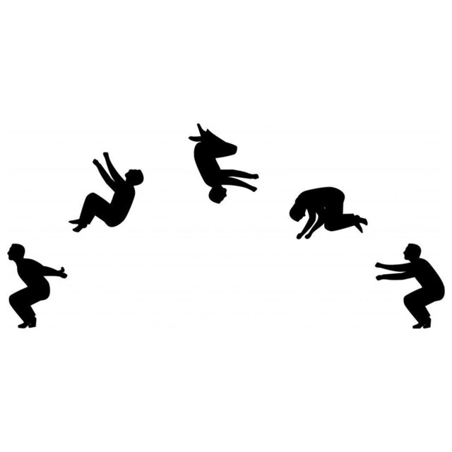 Backflip Silhouette