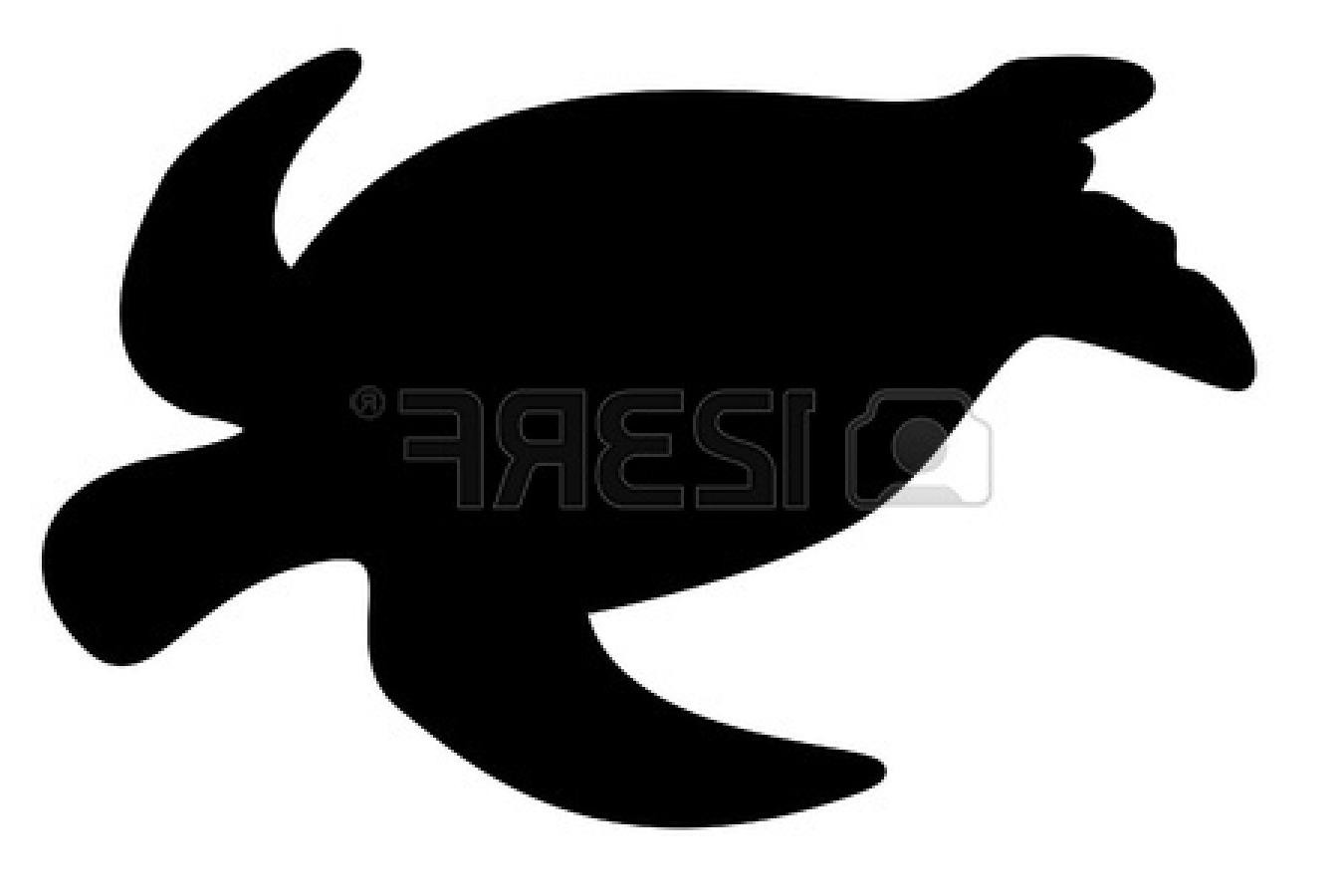 1350x900 Top Sea Turtle Silhouette On White Background Pictures Vector Art