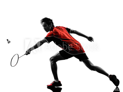 500x375 Badminton Player Young Man Silhouette