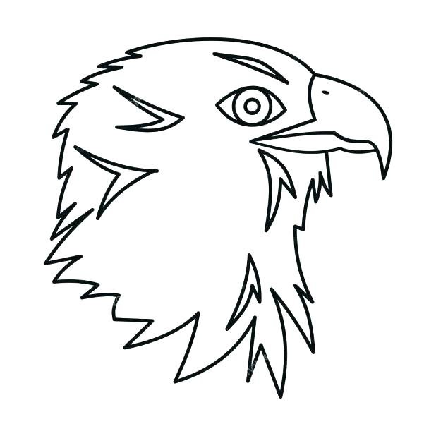 618x618 Bald Eagle Easy Drawing At Free For Personal Use Homey Design Bald
