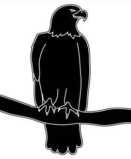270x326 Drawn Bald Eagle Silhouette