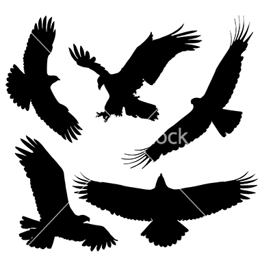 380x400 Eagle Silhouette Vector 1531612