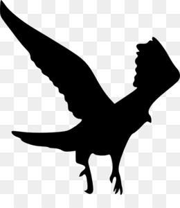 260x300 Bald Eagle Silhouette