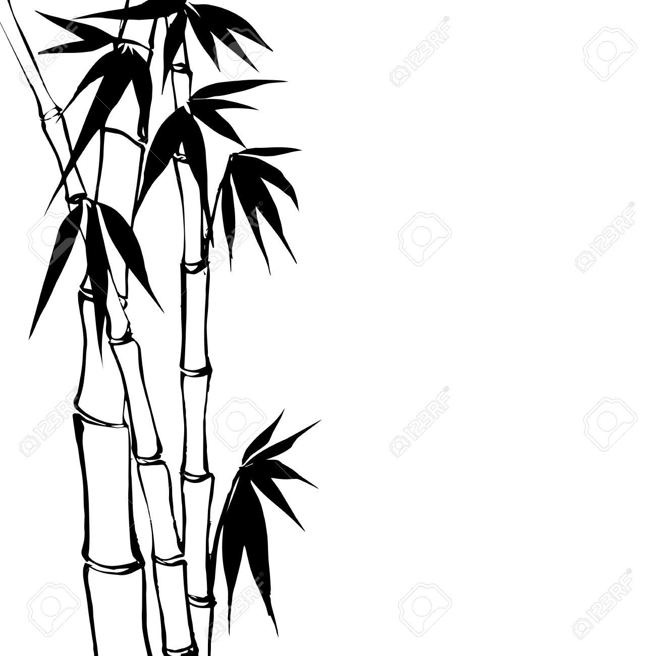1300x1300 Bamboo Tree Drawing