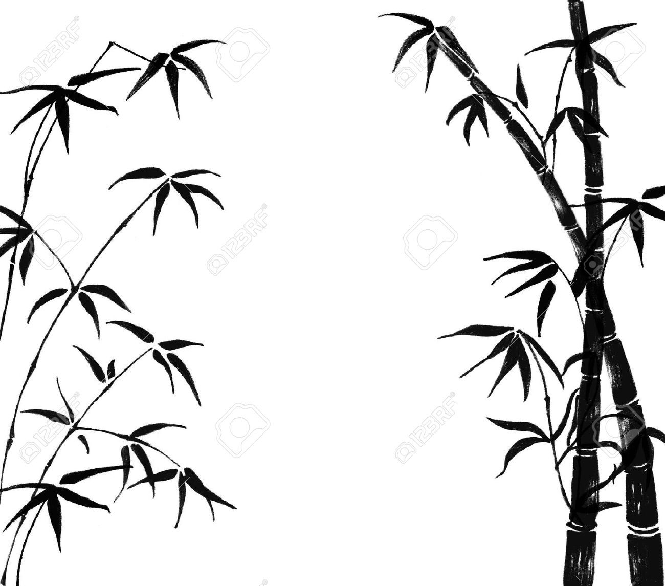 1300x1145 7313671 Silhouette Of Branches Of A Bamboo On A White Background