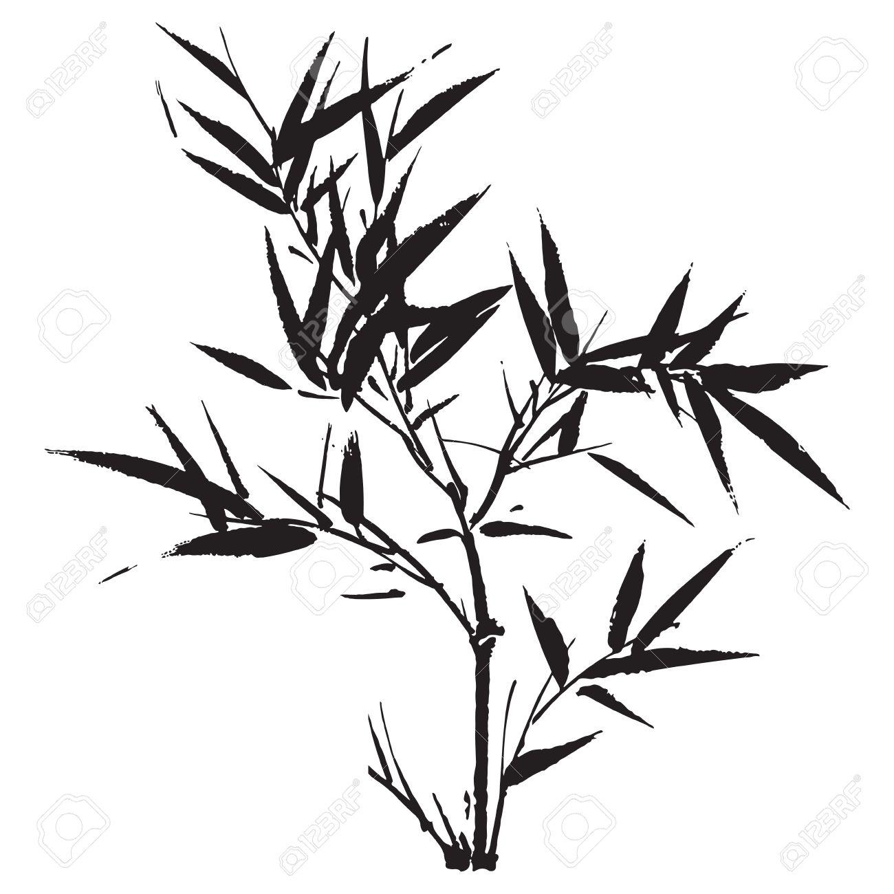 1300x1300 Drawn Leaf Bamboo Leaf