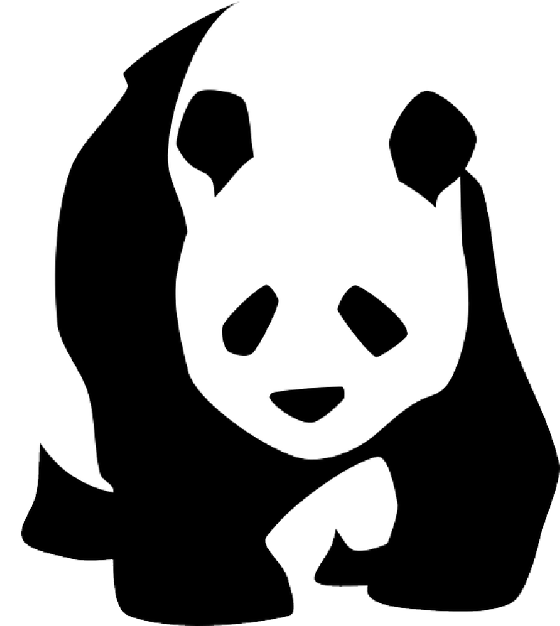 800x895 Silhouette, Face, Bamboo, Cartoon, Wild, Bear, Cute