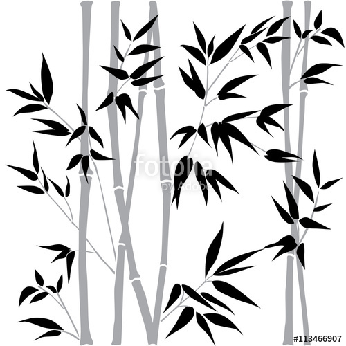 500x500 Decorative Bamboo Branches. Bamboo Forest Background. Vector