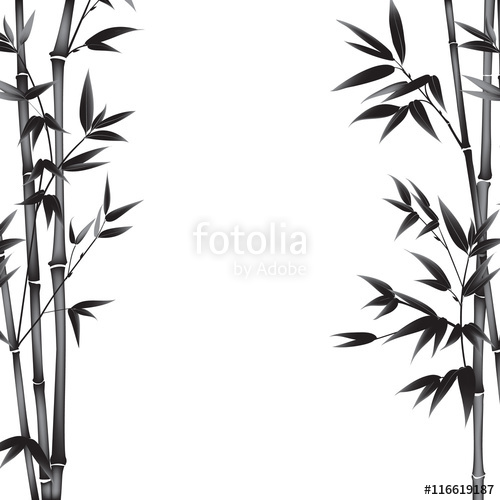 500x500 Bamboo Bush Painting Over White Background. Leaves Of Bamboo Tree