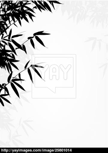 360x512 Bamboo Tree Silhouette Background Vector