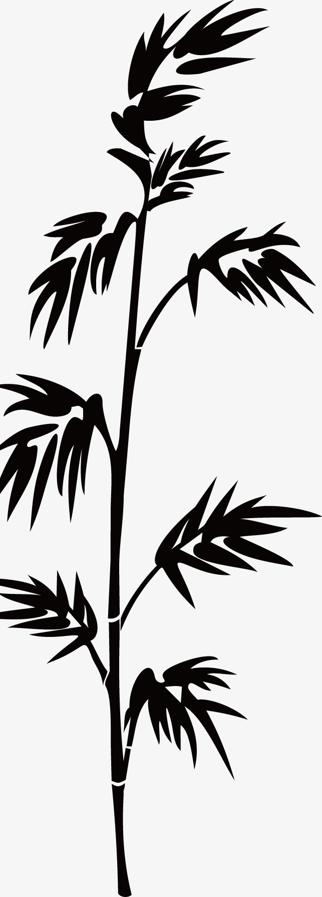 643x1790 Black Bamboo Silhouette, Bamboo, Black, Sketch Png Image