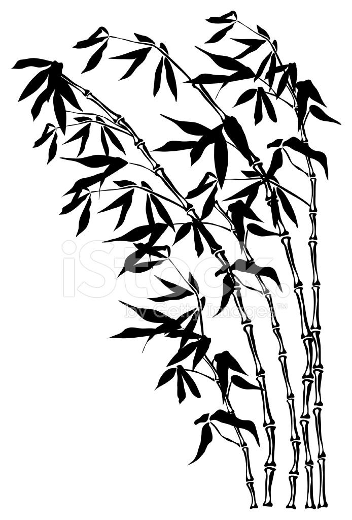 694x1024 Bamboe Silhouet Stock Vector