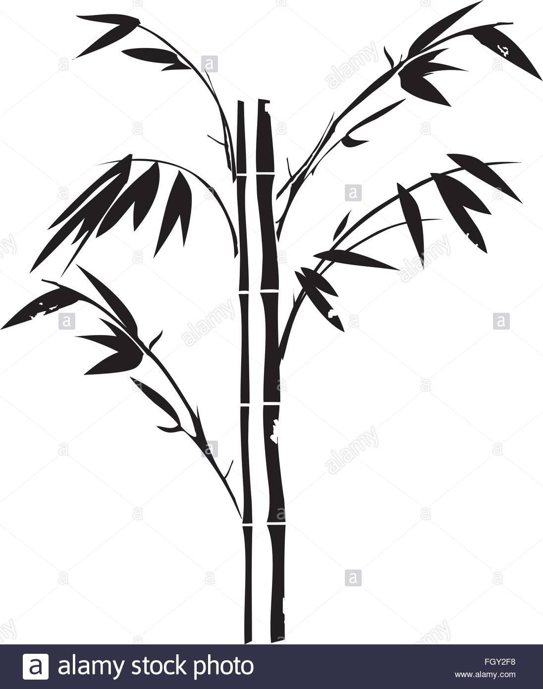 1096x1390 Vector Illustration Of A Grunge Bamboo Silhouette Stock Vector Art