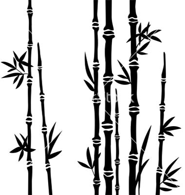 380x400 Bamboo Branches Isolated On The White Background Vector