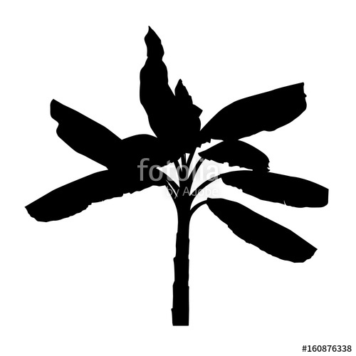 500x500 Silhouette Of Realistic Banana Tree, Black Plant Illustration
