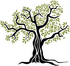 Banyan Tree Silhouette