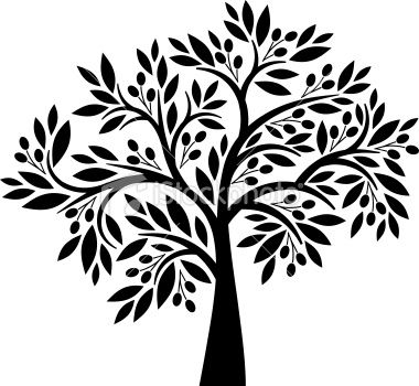 380x350 15 Best Olive Trees Images On Tree Silhouette, Olive