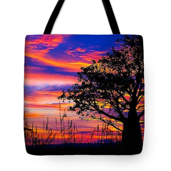 600x600 Boab Tree Tote Bags Fine Art America