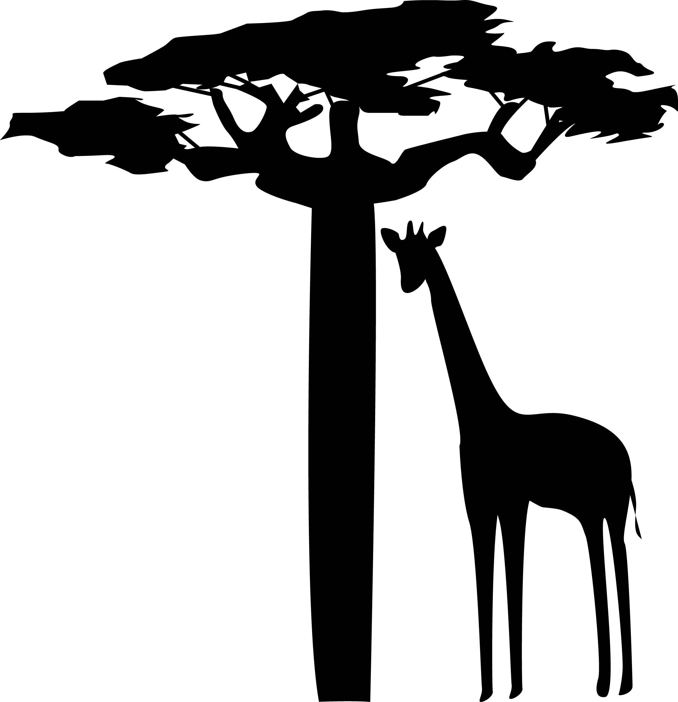 2373x2457 De Recherche D'Images Pour Image Baobab Stylisee