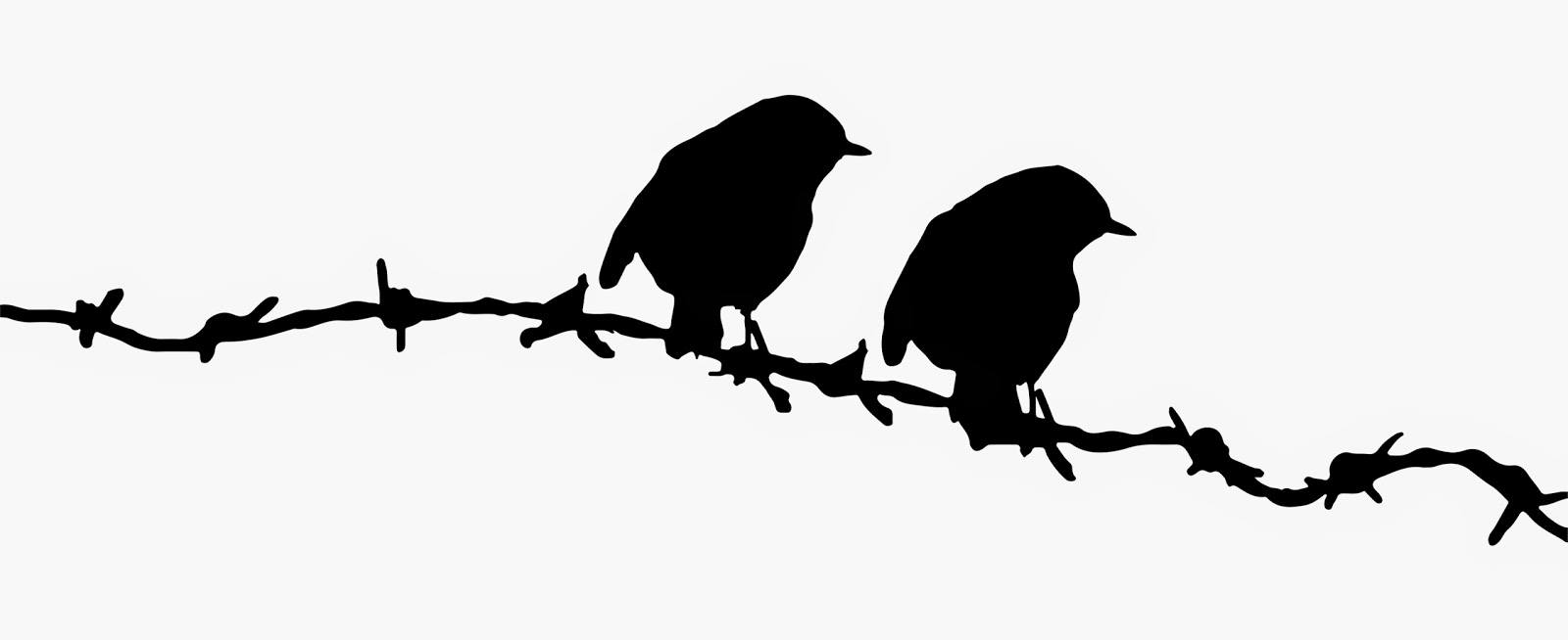 1600x654 Birds On Barbed Wire Hoopoe