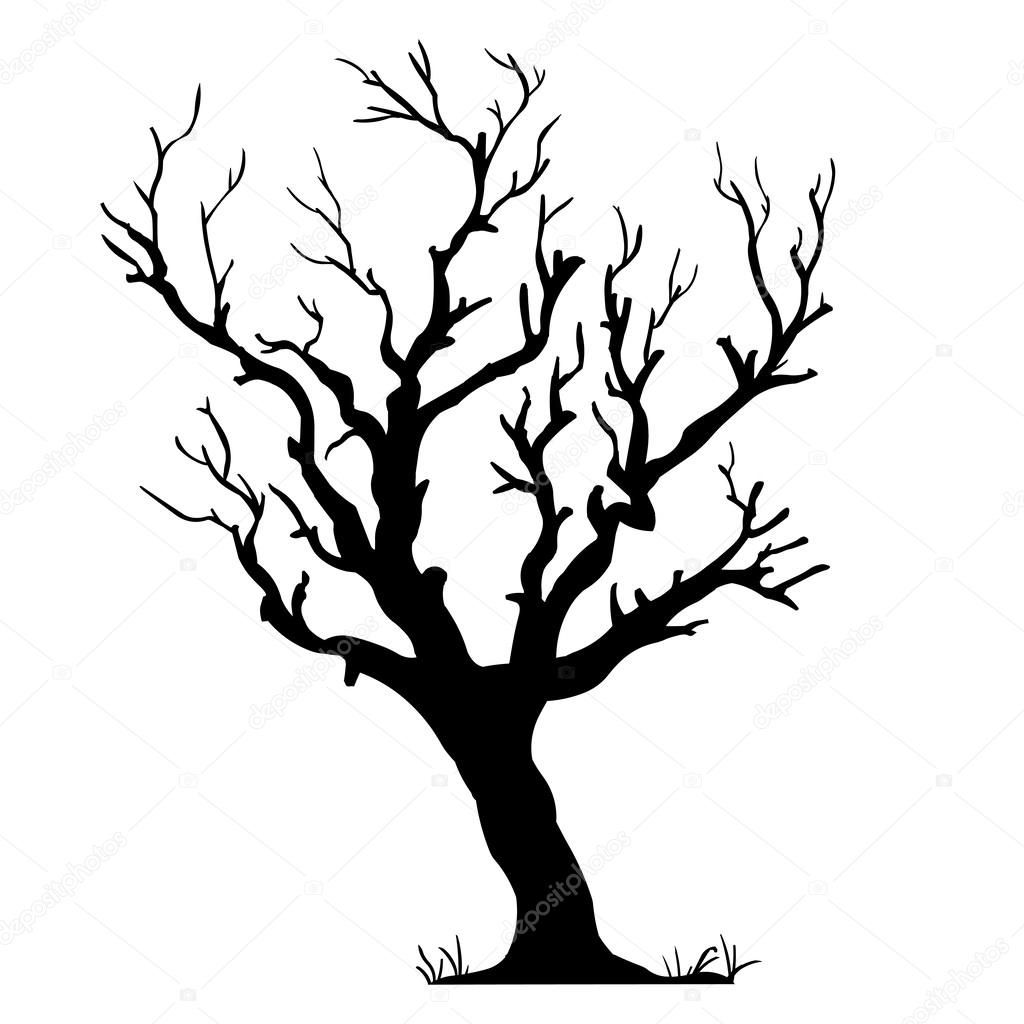 1024x1024 Vector Black Silhouette Of A Bare Tree Images Thai