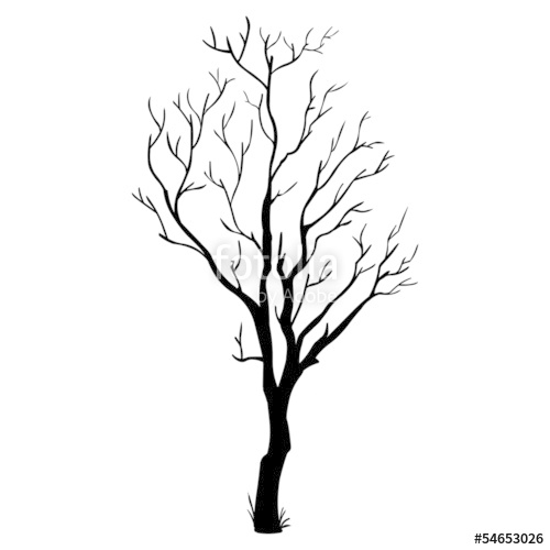 500x500 Vector Black Silhouette Of A Bare Tree Stock Image And Royalty