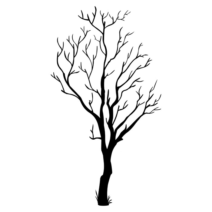 700x700 Vector Black Silhouette Of A Bare Tree Wall Mural We