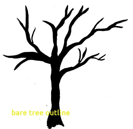 466x452 Bare Tree Outline