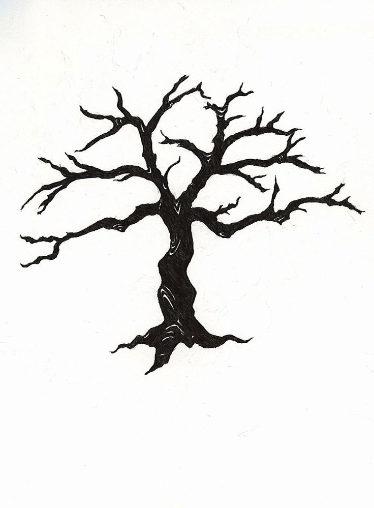 736x999 Drawn Tree Silhouette